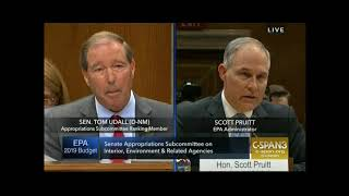 Download Sen. Udall grills Pruitt about housing search Video