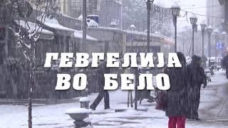 Download gevgelija vo sneg Video
