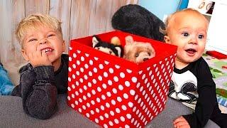 Download ADORABLE PUPPY SURPRISE! Video
