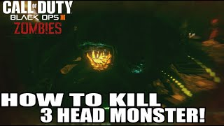 Download How To Kill 3 Headed Monster (After Round) 8 Black Ops 3 Zombies Video