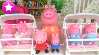 Download Mamá Pig 56# 4 nuevos hermanitos Peppa Pig en español Video
