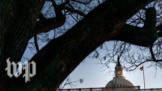 Download Homeland Security secretary Nielsen appears at Senate oversight hearing Video