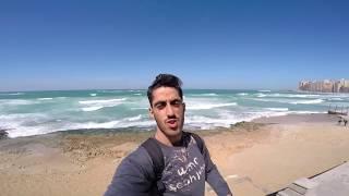 Download رحلة سعوديين من الصعيد للاسكندرية Video