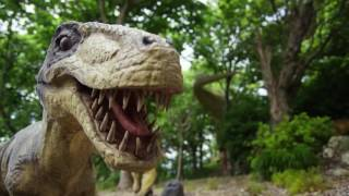 Download Discover the secret of Dinosaur Island with the Watson IoT Platform Video