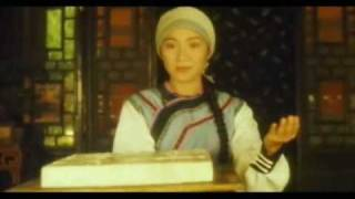 Download Wing Chun - Fight Scenes (Part 01) Video