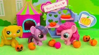 Download MLP Cute Pumpkin Patch Halloween Fashems My Little Pony Littlest Pet Shop Play-doh LPS Video