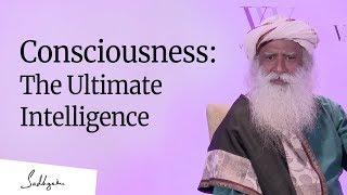 Download Consciousness: The Ultimate Intelligence – Sadhguru [Full Talk] Video