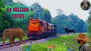 Download Chapramari Railway Track & Wild life . Video