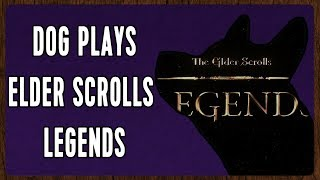 Download Dog Plays Elder Scrolls Legends! [Elder Scrolls Legends] Video