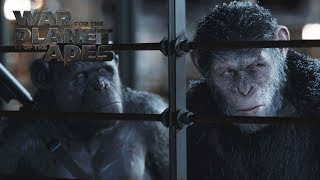 Download War for the Planet of the Apes | ″I Am Like Koba″ Deleted Scene | 20th Century FOX Video