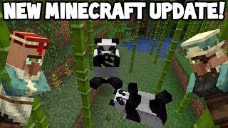 Download Next Minecraft UPDATE! (Village & Pillage) Video