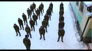 Download Harlem Shake (Original Army Edition) Video