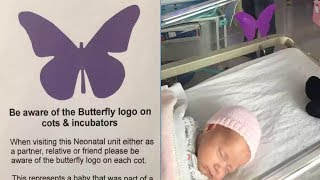 Download See a 'Purple Butterfly' Sign on Baby's Crib? Don't Dare Ask About it From Parents Video