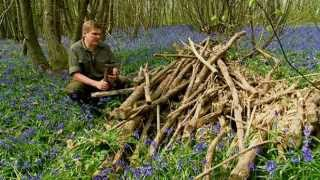 Download Ray Mears - How to bake bread in the outdoors, Wild Food Video