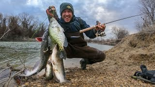 Download Ultra Light Tackle River Fishing | CATFISH & CRAPPIE!? Video