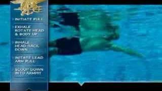 Download US Navy SEALs Combat Swim Video