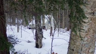 Download Six days winter camping... solo Video