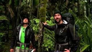 Download Heaphy Track, New Zealand (Great Walks Episode 5 of 9) Video