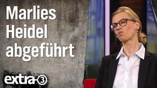 Download Ehring im Gespräch mit Marlies Heidel (AfD-MdB): Nach dem AfD-Parteitag | extra 3 | NDR Video