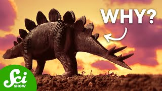 Download 5 Unsolved Mysteries About Dinosaurs Video