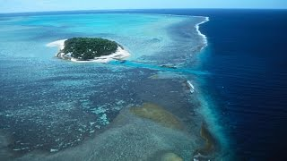 Download (VIDEO) R I P Great Barrier Reef pronounced dead by scientists Video