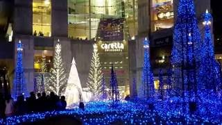 Download Caretta- Ilumination 2016 - Japan Video