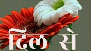 Download Good morning WhatsApp status video Video