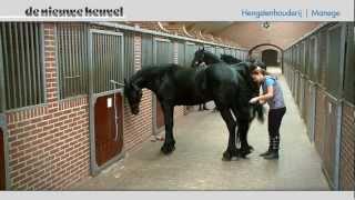 Download Bedrijfsfilm De Nieuwe Heuvel, Lunteren, Gelderland. Bedrijfspresentatie Video