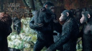 Download War for the Planet of the Apes | ″To Protect My Family″ TV Commercial | 20th Century FOX Video