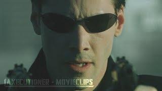 Download The Matrix |1999| All Fight Scenes [Edited] Video