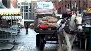 Download Dolly The Last Working Horse in Dublin Video