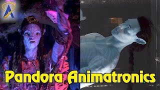 Download Unique Animatronics in Pandora - The World of Avatar at Disney's Animal Kingdom Video