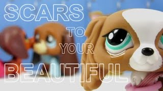 Download LPS: Scars to Your Beautiful (Alessia Cara) Music Video Video
