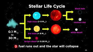 Download The Life and Death of Stars: White Dwarfs, Supernovae, Neutron Stars, and Black Holes Video