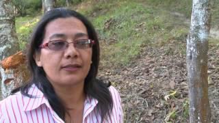 Download El CODEX en Honduras Video