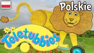 Download Teletubisie Po Polsku -58 DOBRA JAKOŚĆ (Pełny odcinek) Video