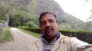 Download Costela - de - Adão Video