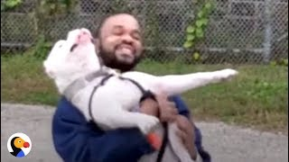 Download Pit Bull and Prisoner CHANGE Each Other's Lives | The Dodo Video