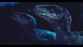 Download Jurassic World: Fallen Kindgom - The Fate of Blue Video