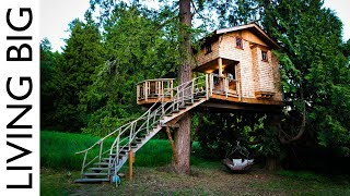 Download Life In The Trees With The Treehouse Masters Video