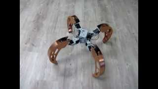 Download Quadruped with walking and rolling locomotion [BiLBIQ 02 - V 03 - following the robot] Video
