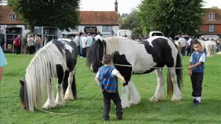 Download Gypsy cob horses Horsemonden Fair 2008 Video