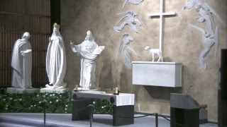 Download Knock Shrine Live Broadcast Video