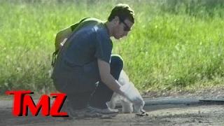 Download Mark Zuckerberg Picking Up Dog Poop! | TMZ Video