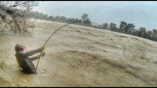 Download CRAZY MAN FIGHT BIG CATFISH IN A SWOLLEN RIVER UNDER THE STORM - HD by CATFISH WORLD Video