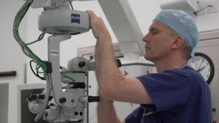 Download Gene Therapy Trial for Blindness [Annual Review 2012] Video
