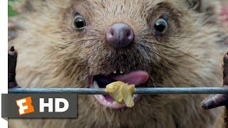 Download Peter Rabbit (2018) - Electric Fence Scene (6/10) | Movieclips Video