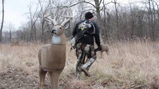 Download How to Practice Bowhunting Shots to Kill a Deer Video