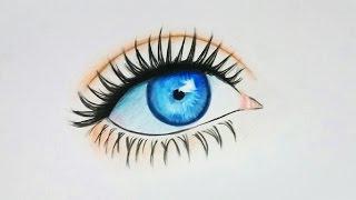 Download Renkli Göz Çizimi Video