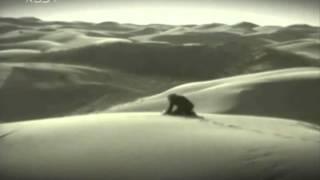 Download 在沙漠種樹的中國婦人 Video